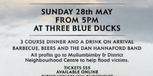 ThreeBlueDucksEVENT POSTER